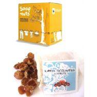 Βιολογικό Απορρυπαντικό Πλυντηρίου Από Καρπούς Ιμαλαίων Soapnuts