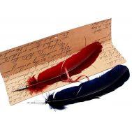 Πένα καλλιγραφίας με φτερό Francesco Rubinato 3055