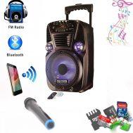Multimedia Σύστημα karaoke με Ηχείο  Pmax 300W, Ασύρματο μικρόφωνο, USB/SD/Bluetooth Player, OEM ES-8
