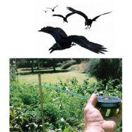 Απωθητικό νήμα πουλιών BIRDCARE